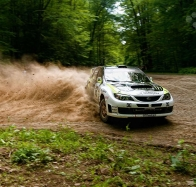 racing in forest wallpaper