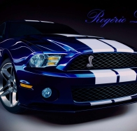 shelby wallpaper