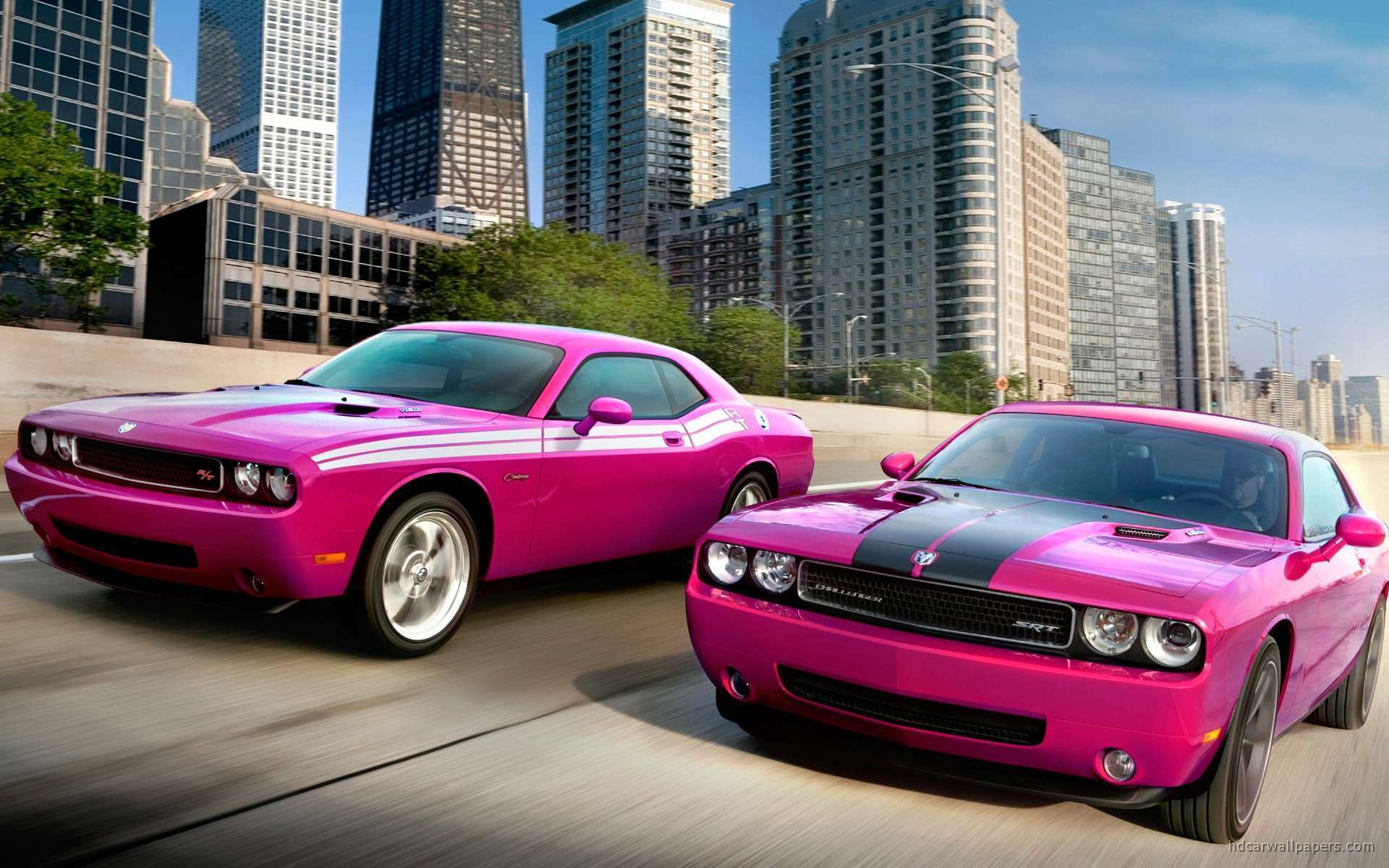 view of dodge challengers rt srt8 hd wallpapers hd car wallpapers. Cars Review. Best American Auto & Cars Review